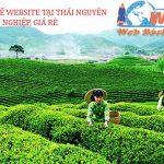 Thiết kế website tại Thái Nguyên chuyên nghiệp, giá rẻ