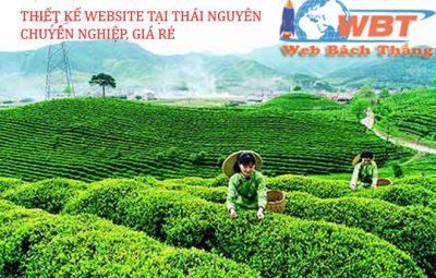 Thiết kế website ở thái nguyên