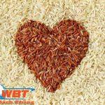 Thiết kế website bán gạo giá rẻ chất lượng tốt nhất thị trường