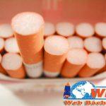 Thiết kế website bán thuốc lá giá rẻ chất lượng chuẩn seo
