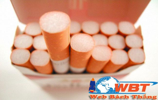 thiết kế website bán thuốc lá
