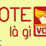 Vote là gì? Vote thường được sử dụng khi nào ở đâu